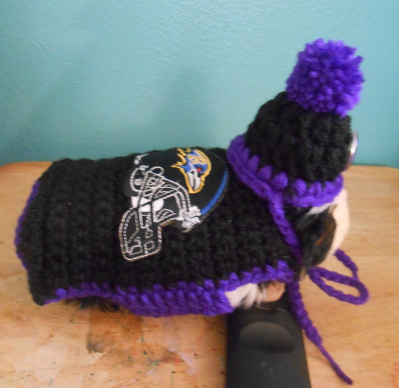 9638ab9f Guinea Pig Baltimore Ravens Sweater and Ravens Hat, Crocheted Guinea Pig  Clothes, Sports Team Football Guinea Pig, Tiny Pet Outfit