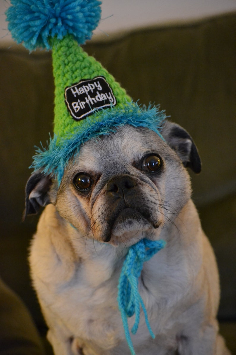 Crocheted Dog Or Cat Birthday Party Hats Pet