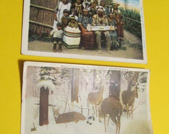 Michigan Postcards, Indians at St. Ignace, Michigan & White Tailed Deer in Northern Mich, Postcard, FREE SHIPPING