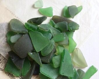 Mixed green seaglass pieces australian beachcombing finds