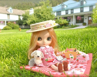 Strawberry Picnic Blanket & Basket