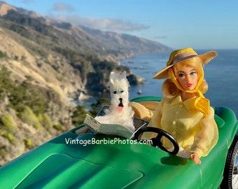 Vintage Barbie Pacific Coast Drive Fine Art Photograph
