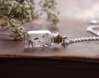 Wish Necklace Real Dandelion Necklace Boho Jewelry Botanical Necklace Glass Terrarium Jewelry Gift For Her