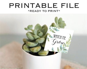 INSTANT DOWNLOAD - Ready To Print Watch Me Grow tags - Succulent - Floral - Greenery - Calligraphy - Modern