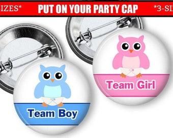 Owls gender reveal party Invitation Pink Blue Boy Chevron Stripes Girl or Boy gender reveal Invite Girl 1476 Black Gray