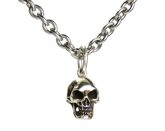 Skull Necklace, Long Steel Chain, Goth Skull Pendant, Memento Mori, Rocker