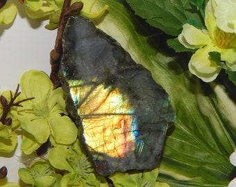 XL 158g RAINBOW Polished Labradorite SLAB spectrolite - Reiki Wicca Pagan Geology gemstone specimen