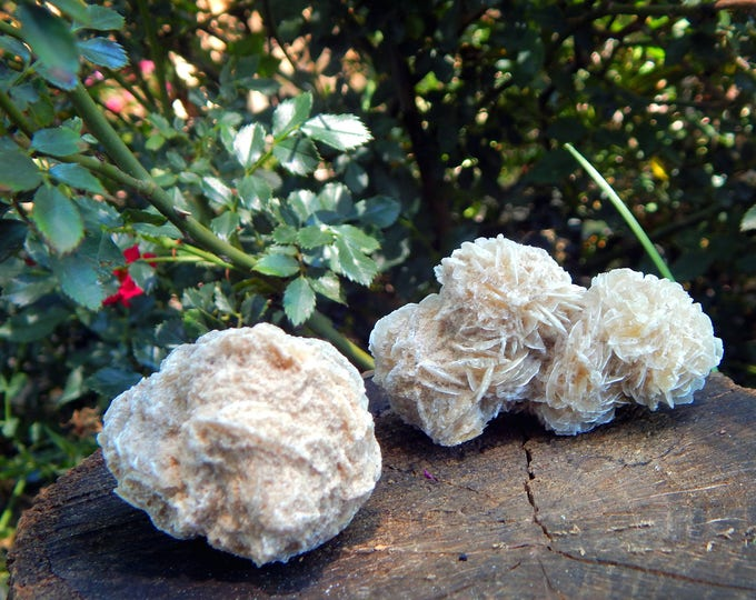 DESERT ROSE Selenite, large Gypsum natural gemstone - hand-picked Reiki Wicca Pagan Energy-work Tool