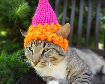 Pet Party Hat Birthday For Cats Cat Dog