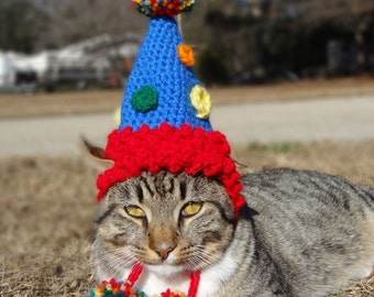 Pet Birthday Hat Party For Cats Dogs Cat Dog
