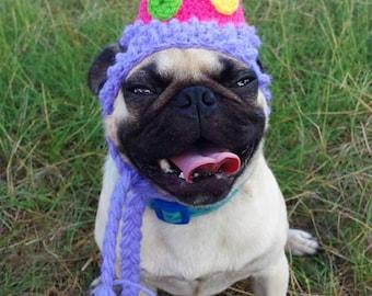 Birthday Party Dog Hat Costume