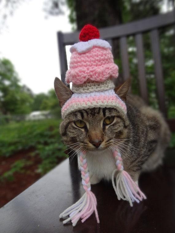 Hüte für Katzen Katzen Mütze Hut für Katze Kostüm Cupcake   Etsy