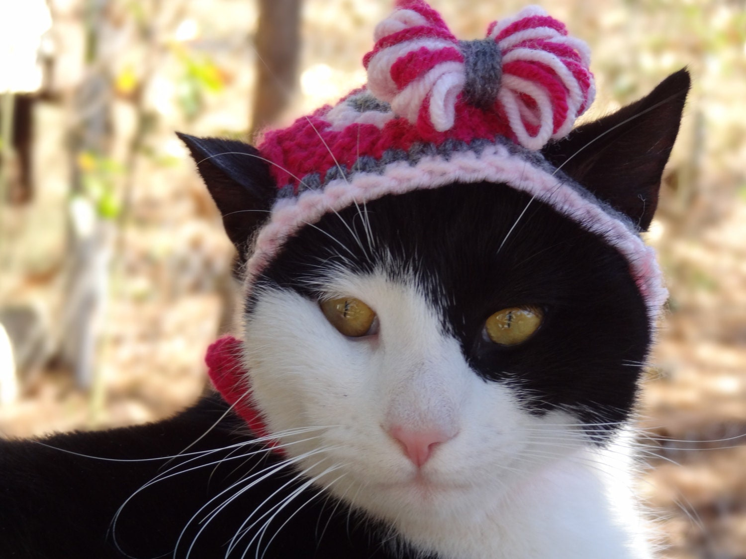 Pink Bow Hat For Cats Cat Clothes