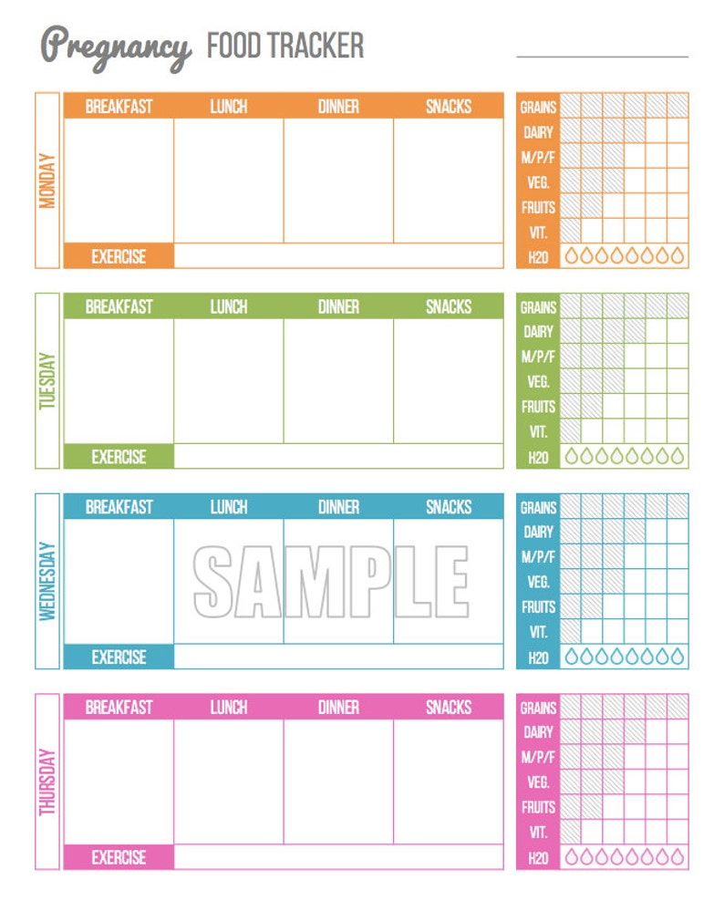 Revered image pertaining to food tracker printable