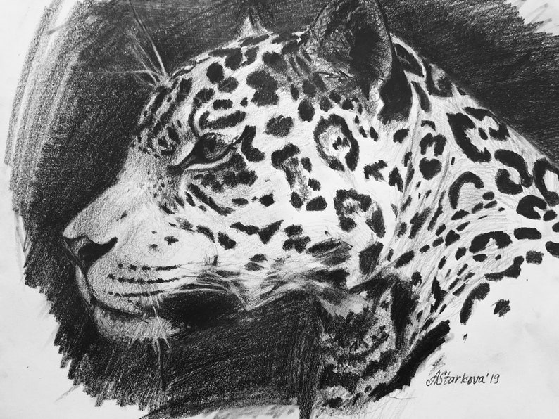 Original drawing \u201cJaguar\u201d 11\u201dx14\u201d