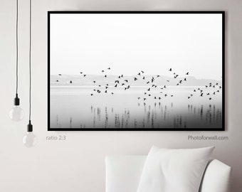Anniversary gifts for girlfriend with Black and white birds on water, Nature wall decor in black and white photography unframed