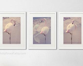 Pink flamingo decor Bathroom Art Set of 3 Photographs, Bathroom set, soft pink, large wall art, Vintage Shabby Chic Bathroom Art, nursery
