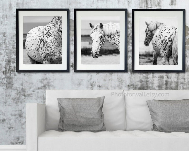 Horse art decor gallery wall art set of 3 Black and white set of 3 16x20 inches