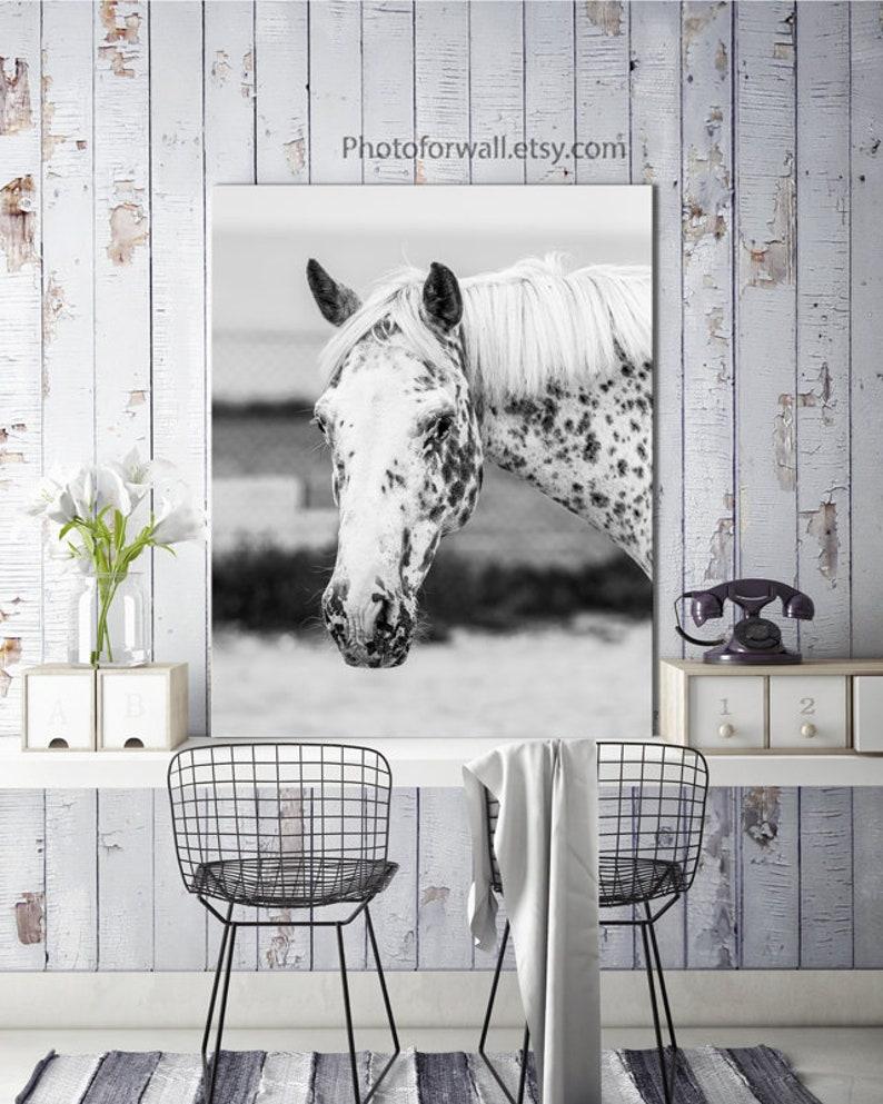 Horse art print White Horse Decor close up horse canvas art image 0