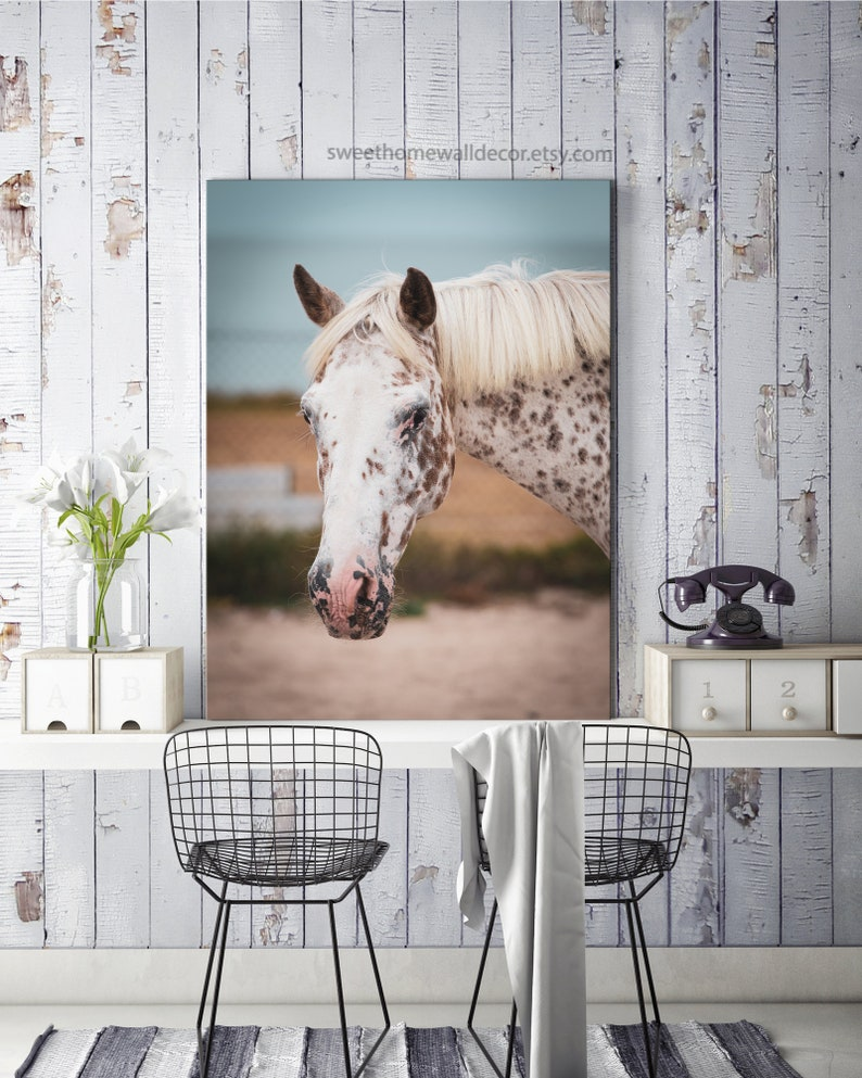 Horse art print White Horse Decor close up horse photography image 0