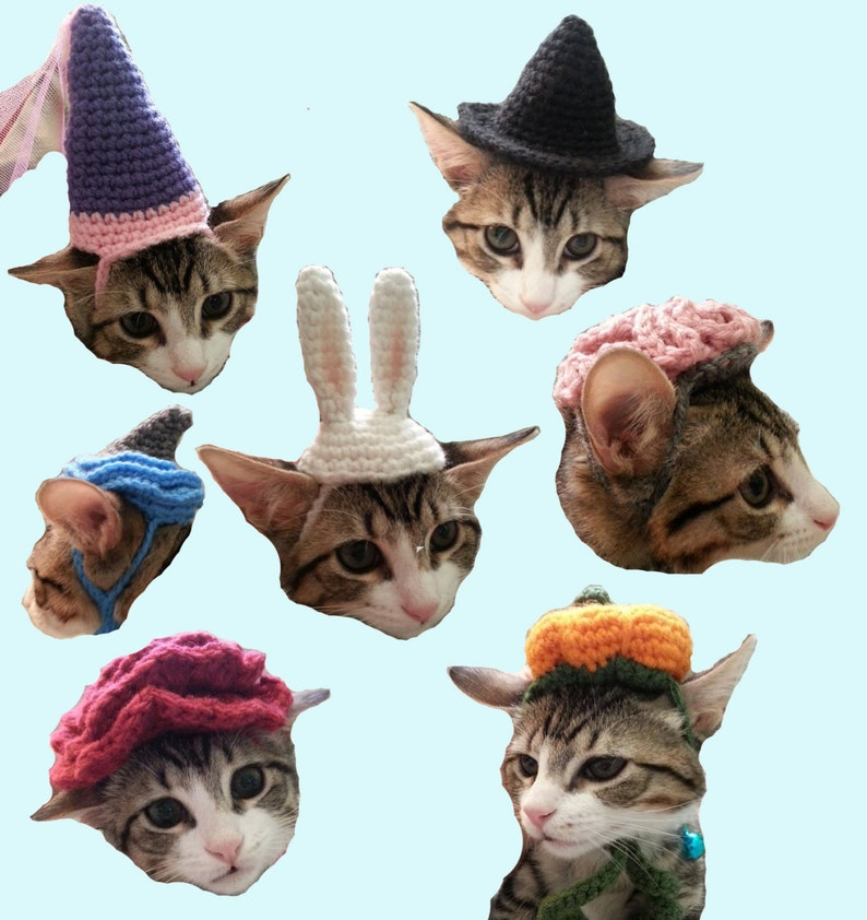7305ce25e70 7 Cat Hat Patterns Halloween Costume Brain Pumpkin Witch