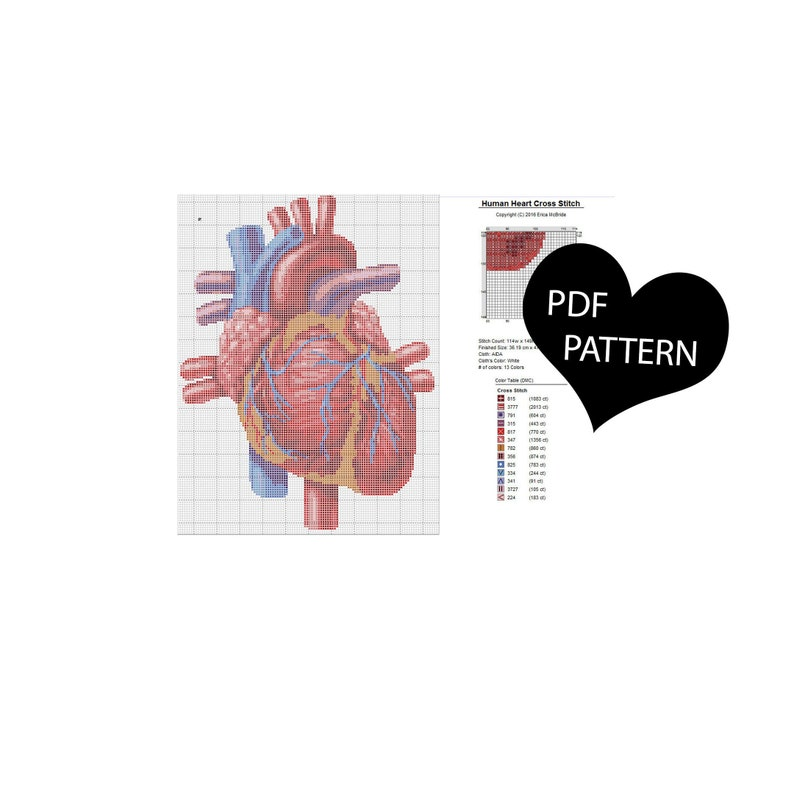 Human Heart X-Stitch Anatomical Detailed Realistic Cross Stitch PDF Pattern