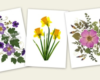 Pressed Flower Cards - set of 6 printed notecards - Gift for Mom-   - #064