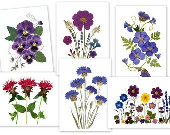 6 Assorted Notecards - Pressed Flower Cards - Printed Cards -  Gift for her -  #089