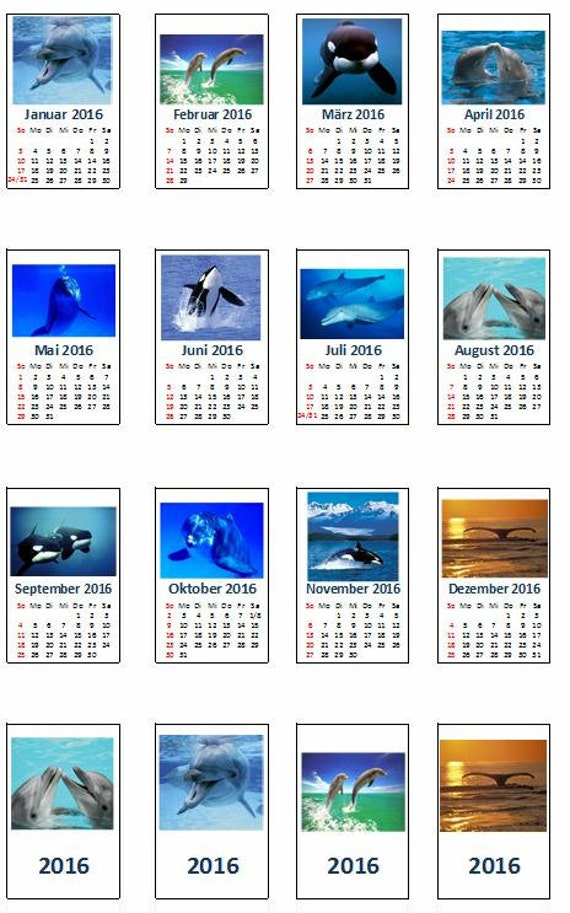 Dollhouse Photography Calendar : Calendar with dolphin pictures diy doll house etsy