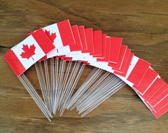25 Canadian flag party picks - hors d'oeuvre picks - maple leaf flag party picks - food snack picks - Canadian flag party supplies - Canada