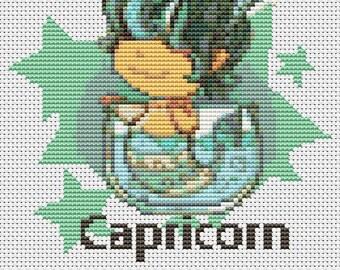 Capricorn Cross Stitch Kit, Astrology Cross Stitch, Zodiac Cross Stitch, Embroidery Kit, Art Cross Stitch, Zodiac Series