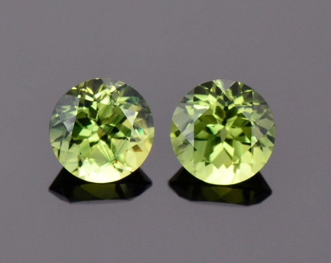 Fabulous Green Yellow Sapphire Gemstone Match Pair from Australia, 2.22 tcw., 6 mm., Round Shape