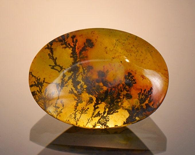 Picturesque Dendritic Quartz Gemstone from Brazil 12.22 cts
