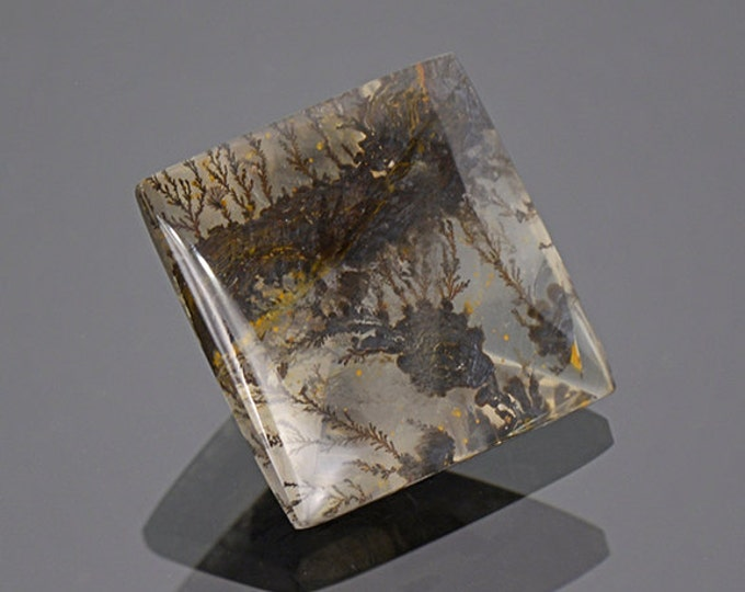 Fine Dendritic Quartz Gemstone from Brazil 11.05 cts