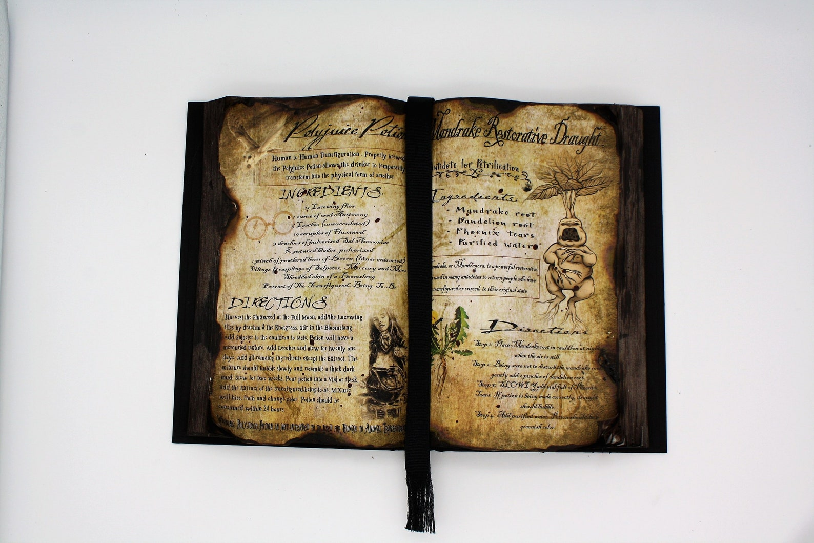 Harry Potter Inspired Spell Book