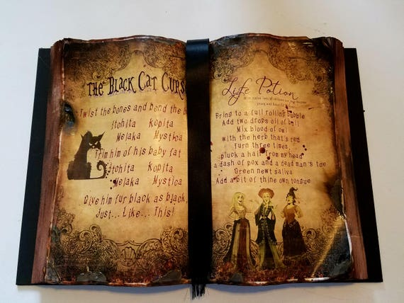 Black Cat Curse And Life Potion Spell Book Hocus Pocus Etsy