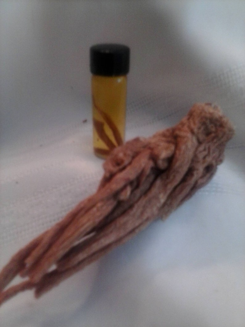 Master Root Oil, Rare Master Root, metaphysical, occult, herbs, roots