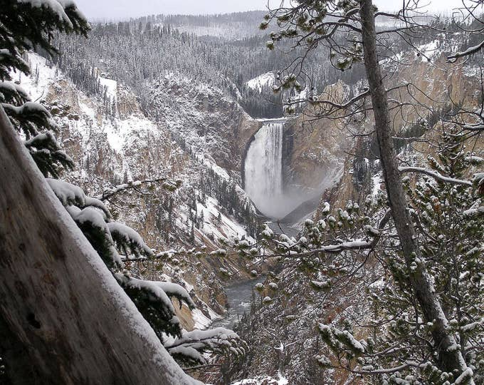 Lower Falls of the Grand Canyon of Yellowstone, late Fall