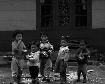 The little rascals........Lachung, N. Sikkim 2007