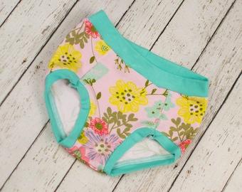 Kids Clothing, Kids Underwear,  Toddler Underwear, Training Pants, Girls Underwear, Toddler Girl Underwear, Kid Clothes, Training Underwear
