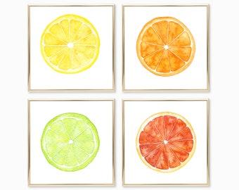 Citrus Watercolor Print Set of 4 - Square Art Prints - Kitchen Wall Decor - Orange Lime Grapefruit Lemon - Citrus Kitchen Food Painting