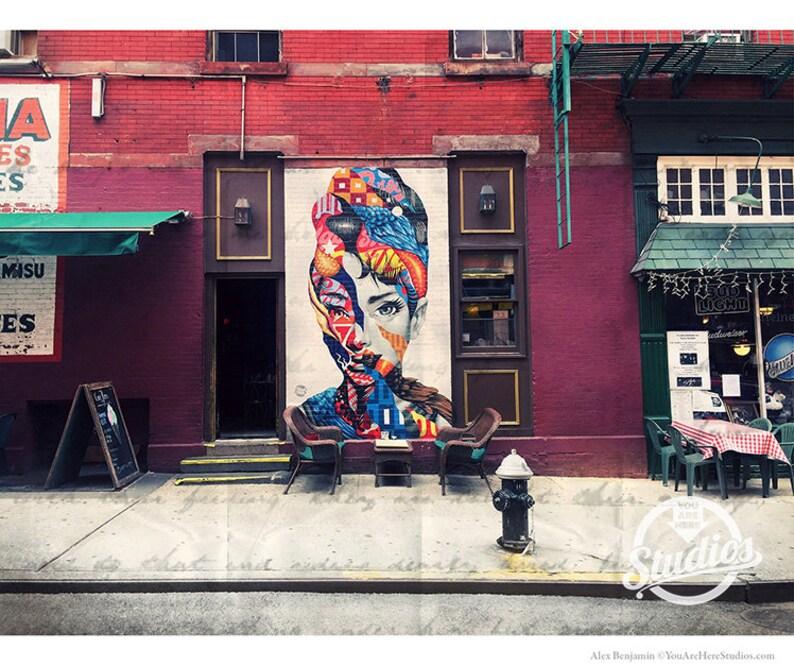 Audrey Hepburn Graffiti donna fotografia New York City  bd39b486bc21