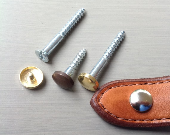 Hardware, wood screw with caps