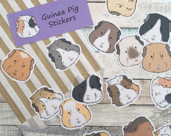 Guinea Pig Faces Stickers - Pack of 12 stickers, guinea pig stationery, gift for guinea pig lovers