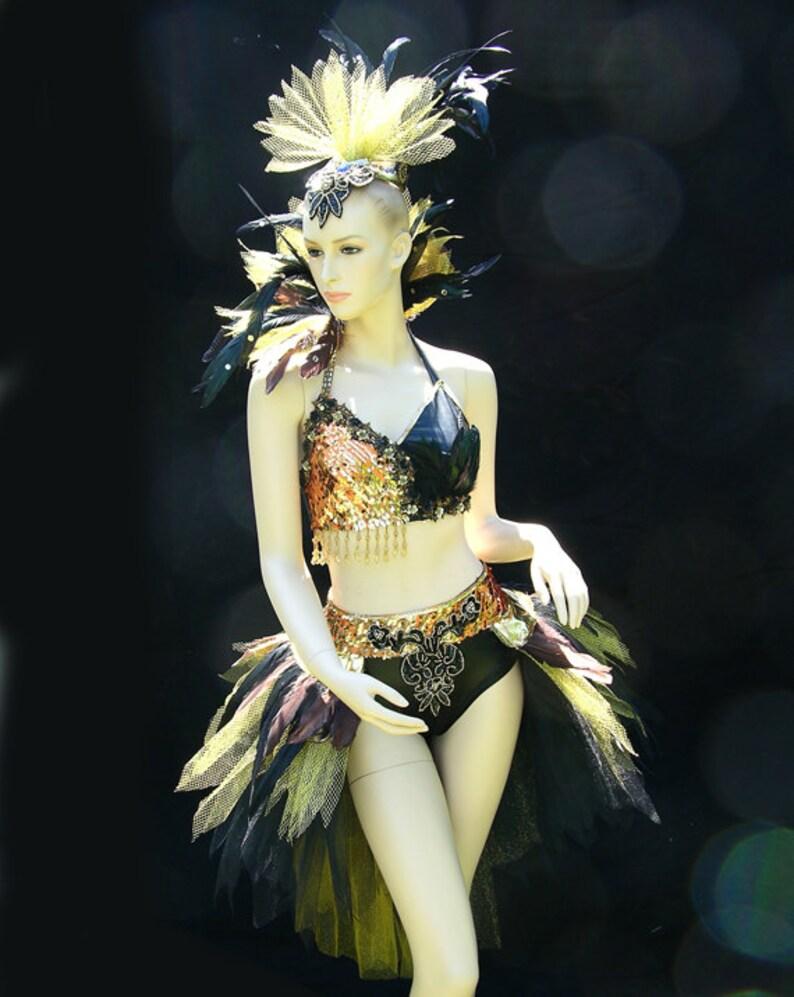 71ab154a6 Ballet & traje de Broadway - moderno estilo tutú del Ballet / traje de  Broadway.
