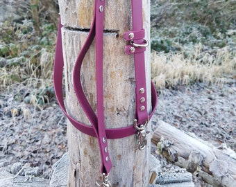 Nickel Brass Steel Standard Dog Leash 58 Wide Biothane Waterproof Dog Leash Stainless and more! Custom Colors and Snaps