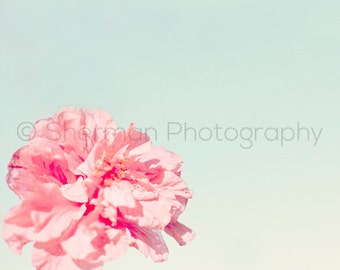 Flower Photography - Pink Peony Print - Nature Photography - Pretty Teal Dreams - 8x10 8x8 10x10 11x14 12x12 20x20 16x20 - Photography