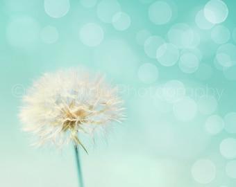 Dandelion Photography - Flower Photo - Dreamy Print - Nature Photography - Bokeh Photo - 8x10 8x8 10x10 11x14 12x12 20x20 16x20