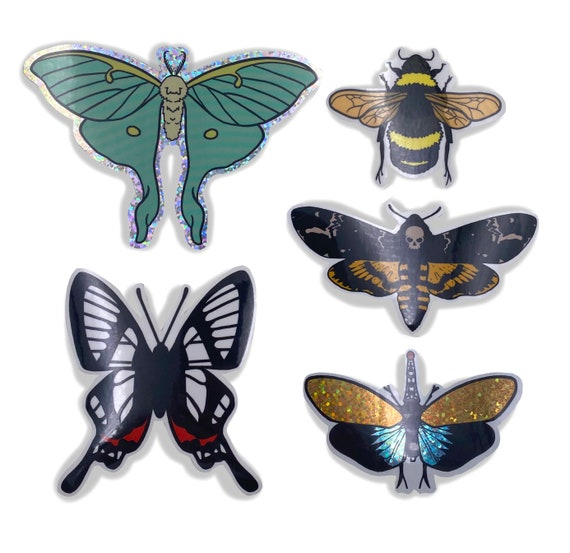 "5 piece ""Pet bug"" vinyl sticker set!"