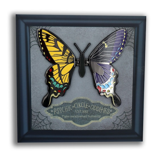 Gynandromorph Tiger swallowtail butterfly- moving wing enamel pin!